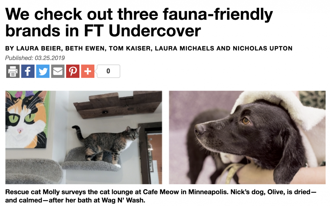 FT Undercover Comes to Wag N' Wash
