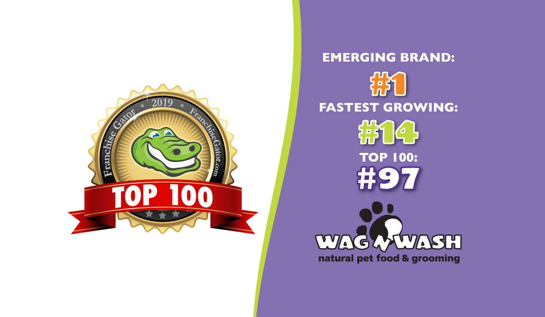 Wag N' Wash Named #1 Emerging Brand