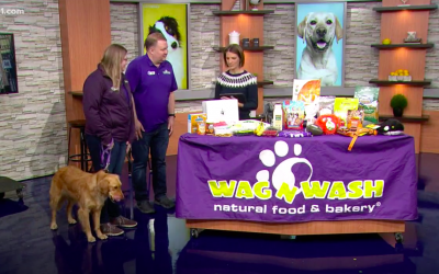Wag N' Wash's Homemade Treats Featured on TV!