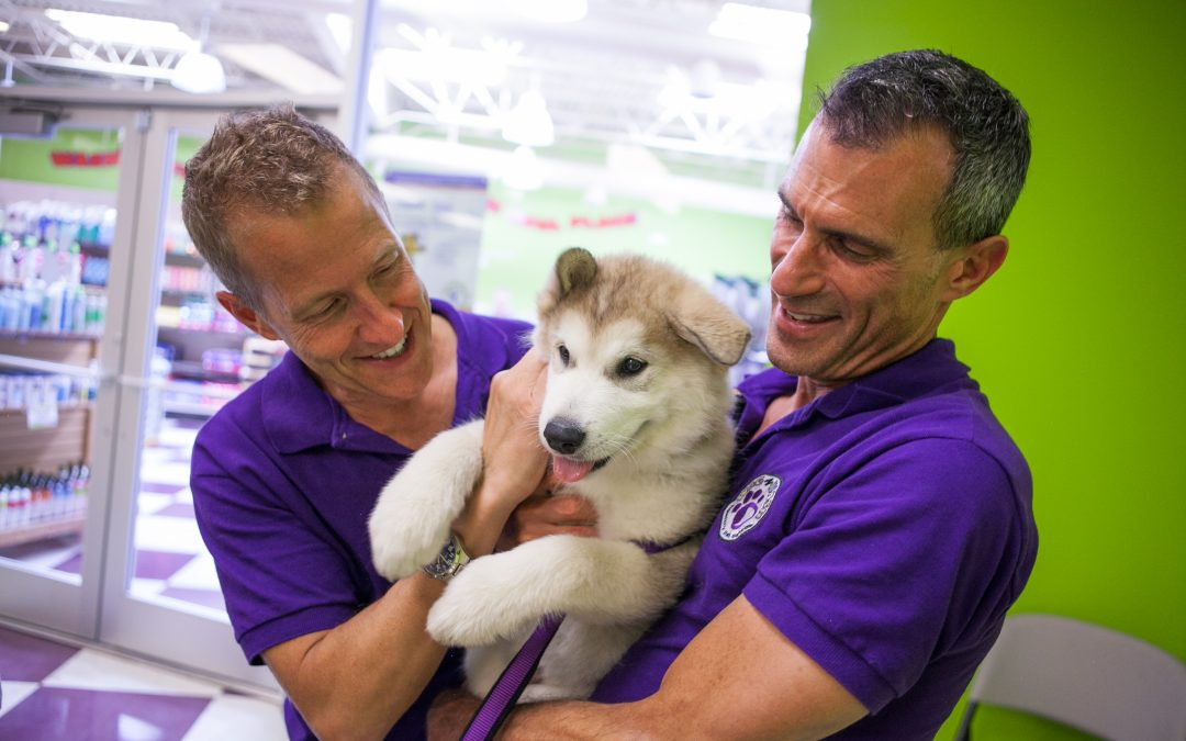 Our Pet Store Franchise Hosts Dental Care Clinic
