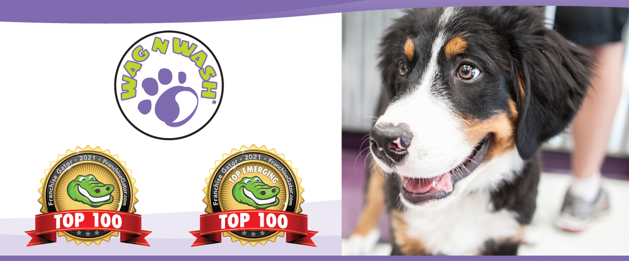 Pet Franchise Wag N Wash Franchise Gator Top 100 and Top Emerging Awards next to a picture of a dog